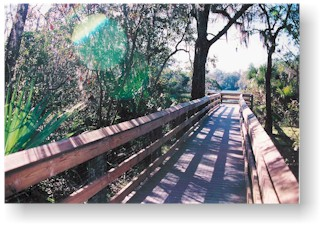 Boardwalk at Rainbow Springs State Park, The Rainbow River, Dunnellon Florida