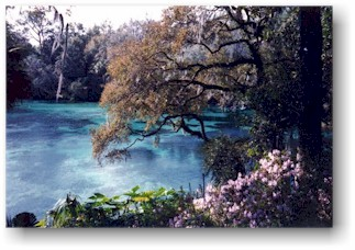 Rainbow Springs at The Rainbow River, Dunnellon Florida